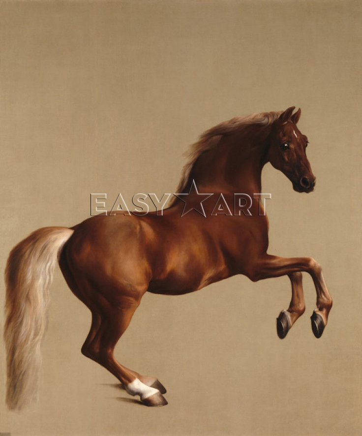Whistlejacket print
