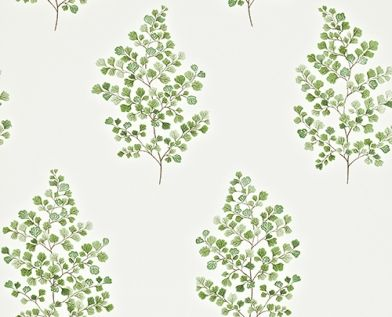 Angel Ferns (211995) - Sanderson Wallpapers - A delicate, fresh, botantical print of an Angel Fern motif' - shown in the emerald green on a off white background. Other colours available. Please request a sample for a true colour match. Paste-the-wall product.