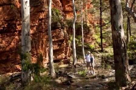 The Southern Flinders Ranges