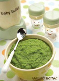 Baby food recipes for my Baby Bullet (love that thing!!!)  Phase 2: 9-18 months