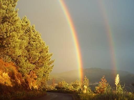 Una bella imagen gracias a la lluvia y el sol.