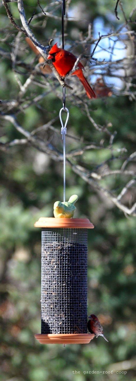 49 best images about tube bird feeder plans on pinterest for Homemade bird feeder plans