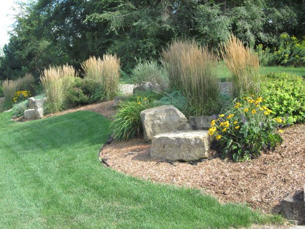 232 best images about berms on pinterest gardens for Tall grass landscape ideas