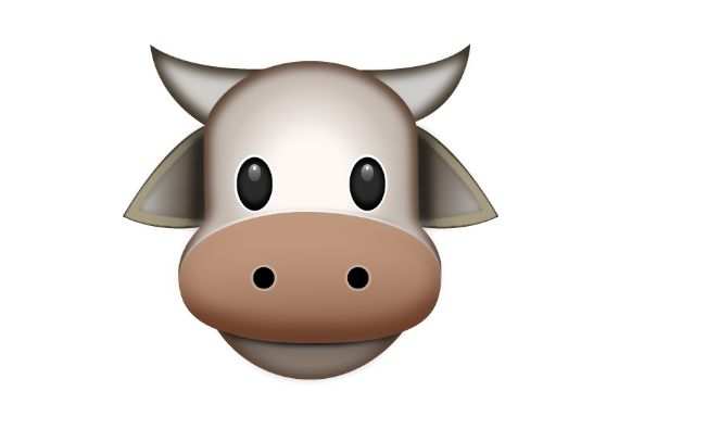 COW FACE  #emoji  https://www.emojimantra.com
