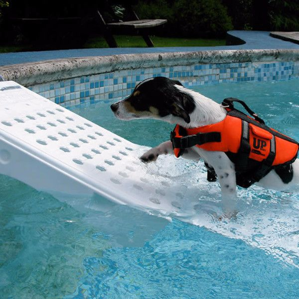 Save your pool, liner, and pet with Game Skamper-Ramp Animal Water Ramp presented by Pool Toy Express. Perfect for pools that tend to attract chipmunks, squirrels, turtles, mice, snakes, frogs or any