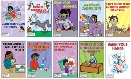Lab Safety Rules Posters | Science Safety and Classroom Management | Brittany Hasseldeck's Web ...