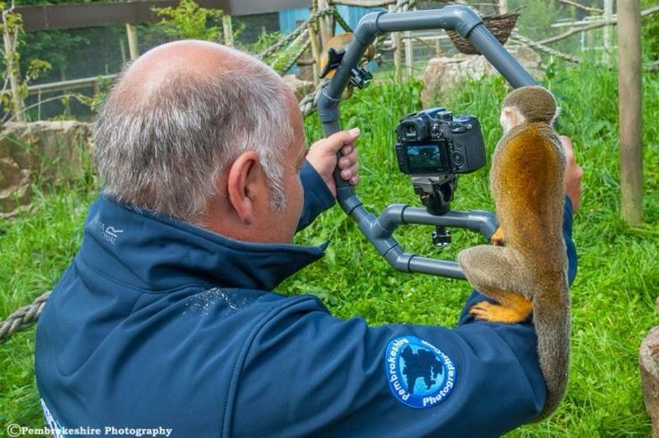 #RIGSHOTS @FocusPulling from @SkycamWales @pembsphoto: #GH3  + monkey!