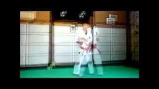 Basic Shinshinkan Karate Do