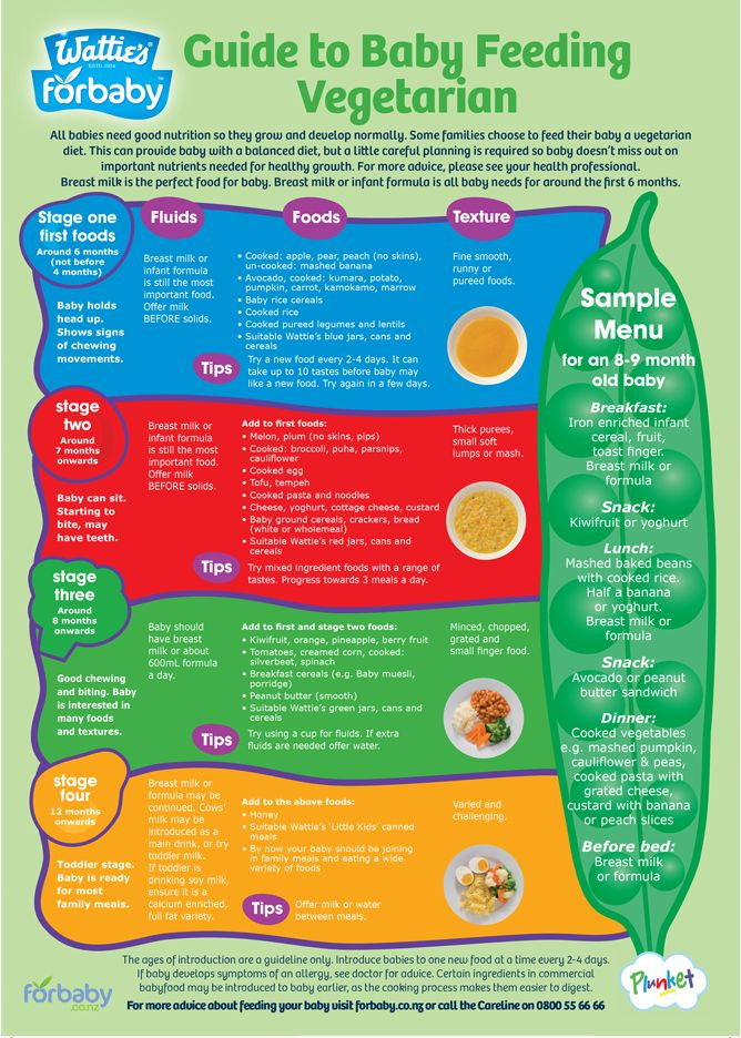 Guide to Baby Feeding Vegetarian | Forbaby.co.nz