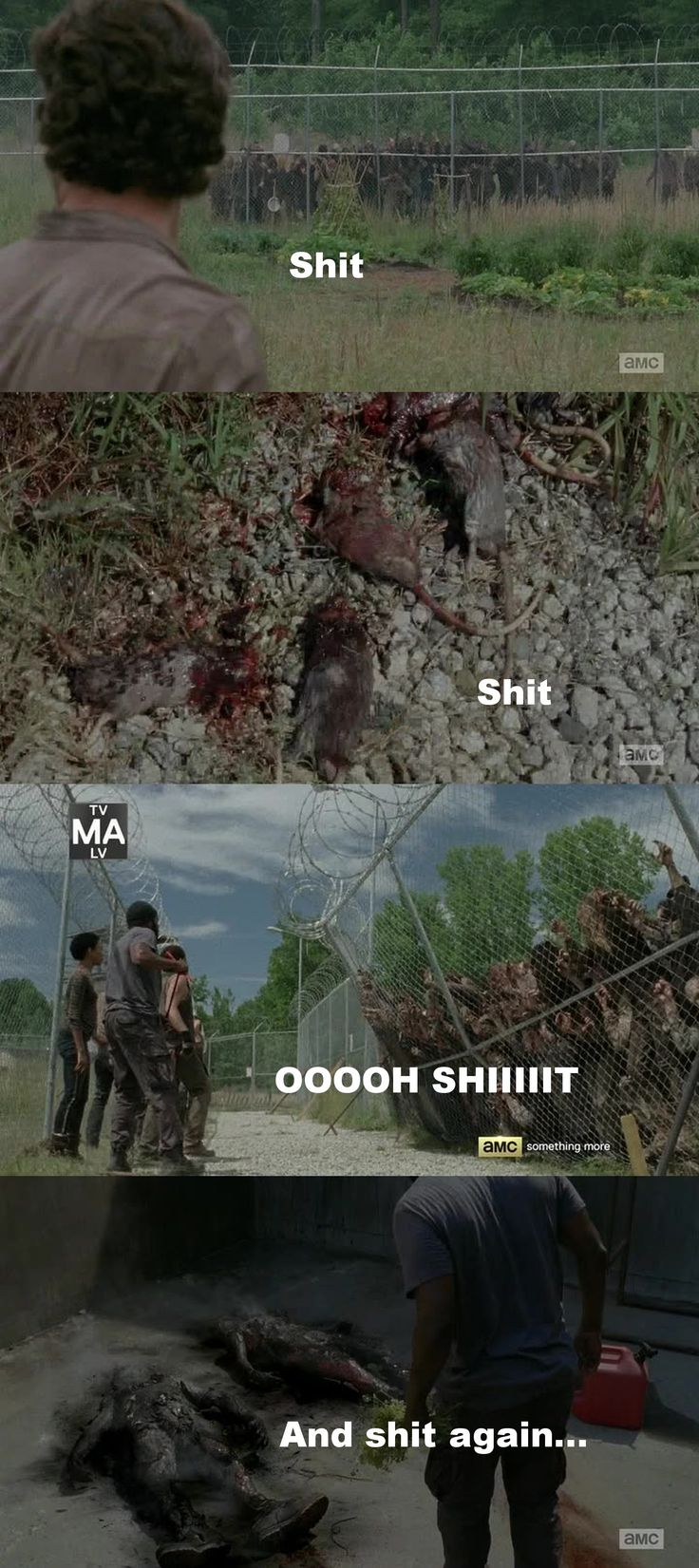 77 best The Walking Dead memes images on Pinterest | The walking ...