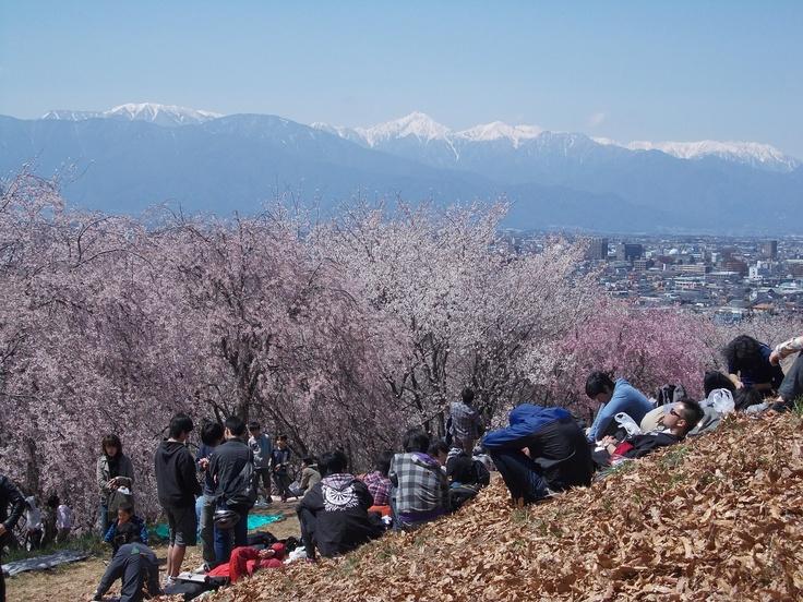 Mt Koubou, Matsumoto 2013