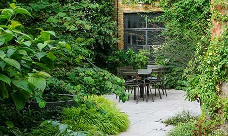 dan pearson's small London garden tips