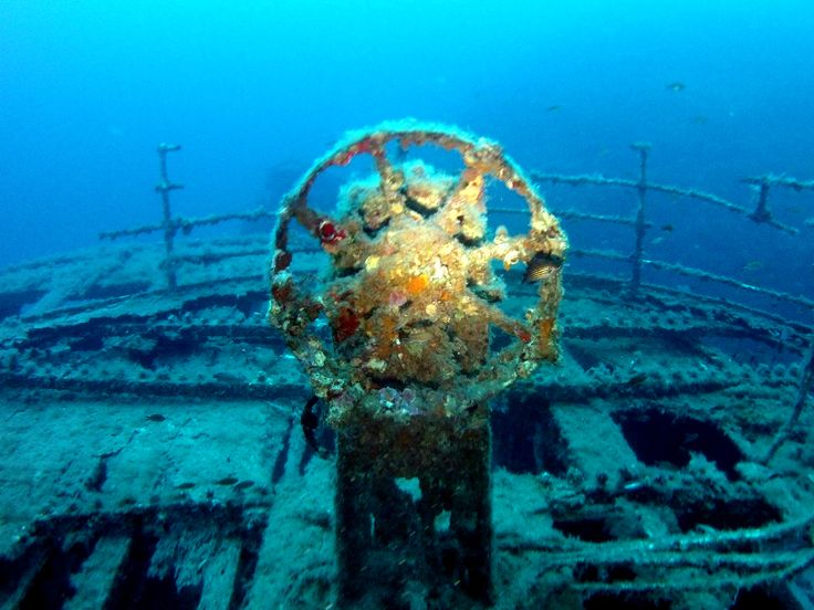 The Imperial Eagle, an old ferry, was scuttled in July 1999 and lies perfectly upright on a sandy seabed. The deck is approximately 30m deep and the wreck is open for penetration. Not far from the wreck, approximately 30m from the bow, there is a large statue of Jesus Christ with outstretched arms. Photo by Brian Azzopardi, Atlantis Diving Centre.