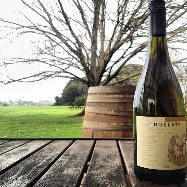 St Huberts 2015 Roussanne yarravalleylife.com - at St Huberts Winery #yarravalley #wine #yarravalleylife
