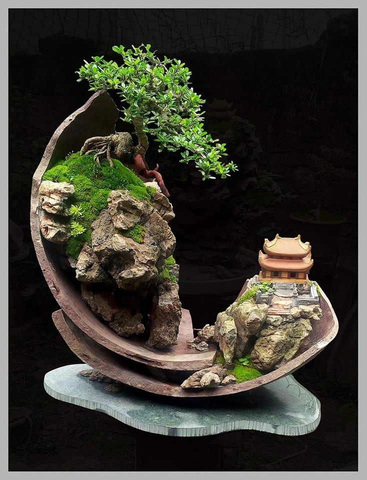 Wonderful Bonsai landscape creation from Naboria Bonsai