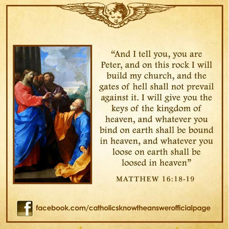 THE POPE IS THE DIRECT SUCCESSOR OF ST PETER-- JESUS CHRIST HIMSELF TOLD ST PETER TO BUILD THE ROMAN CATHOLIC CHURCH AND HE WILL SEND THE HOLY SPIRIT AND HIS APOSTLES TO GUIDE US