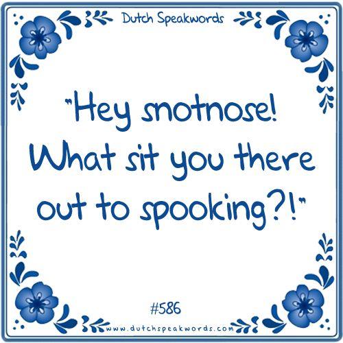 Klik op de foto om naar de Dutch Speakwords webshop te gaan!