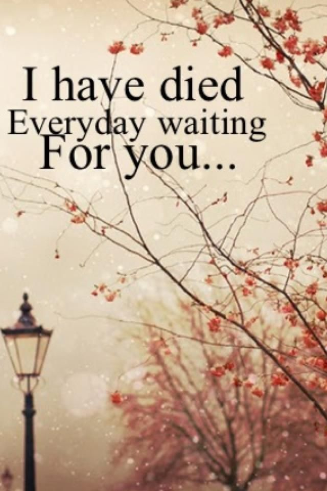 1000+ images about my wedding slow dancing song ♥♥ on Pinterest | A Thousand Years, Christina ...