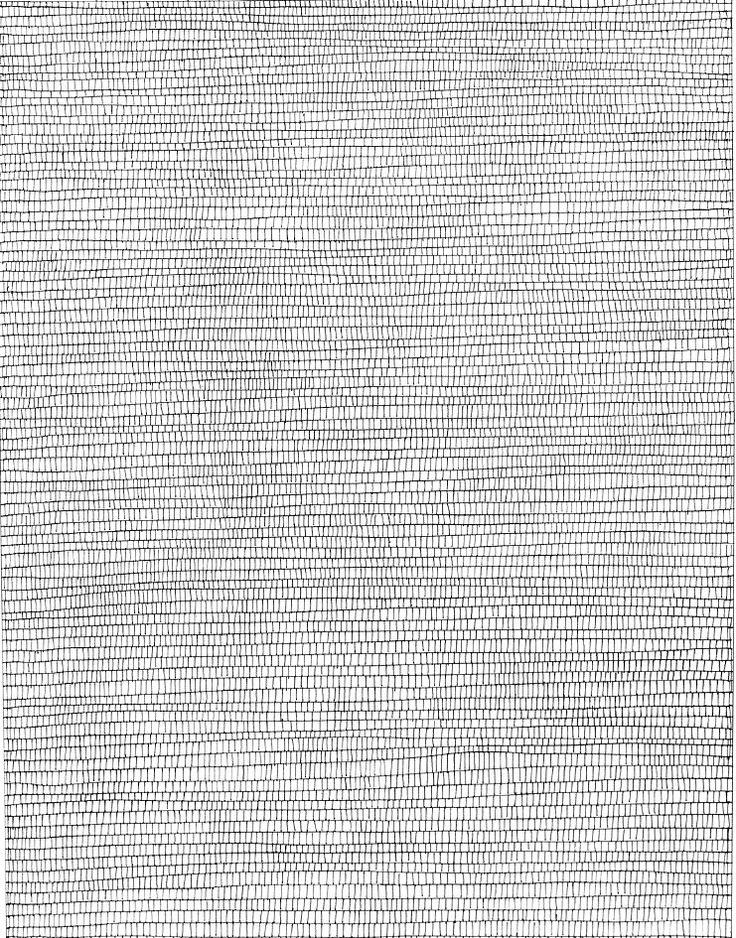 Omringd door kunstenaars als Jan Schoonhoven, Armando, Herman de Vries en Henk Peeters, ontwikkelt Rajlich in de loop van de jaren zeventig zijn unieke beeldtaal. Aanvankelijk maakt hij voornamelijk inkttekeningen op papier met lijnenstructuren.