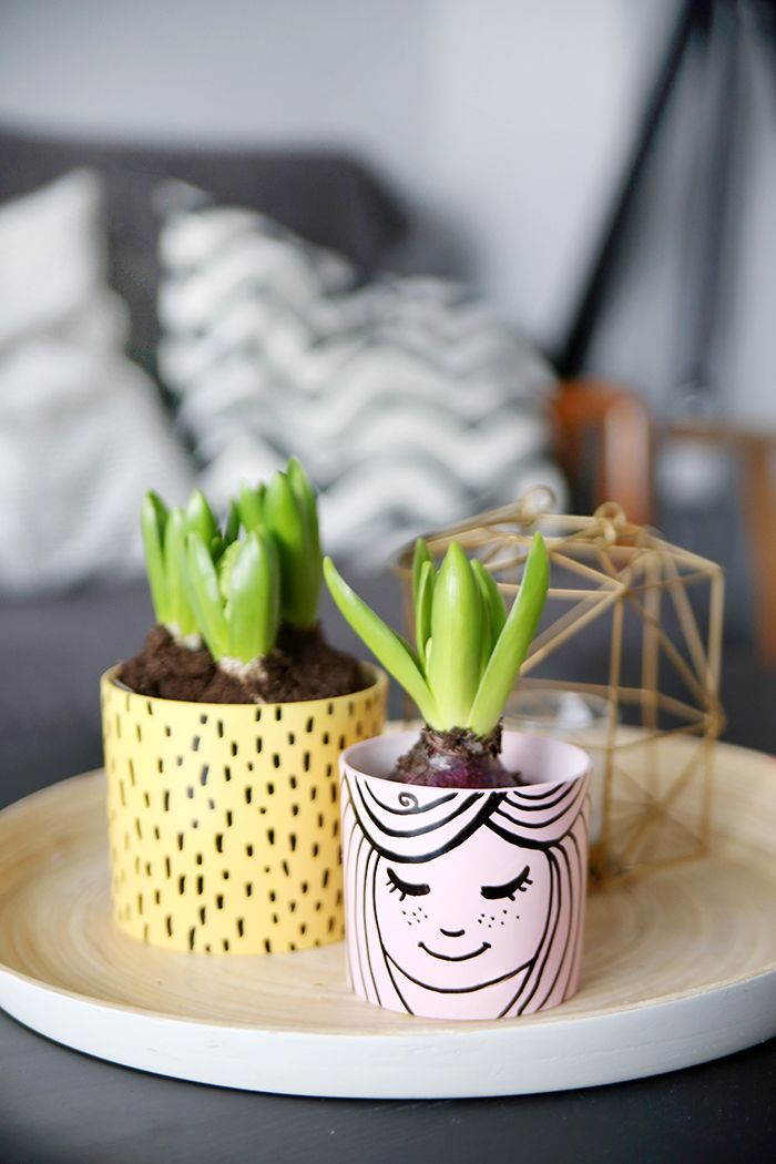 {DIY} Succulent Planter