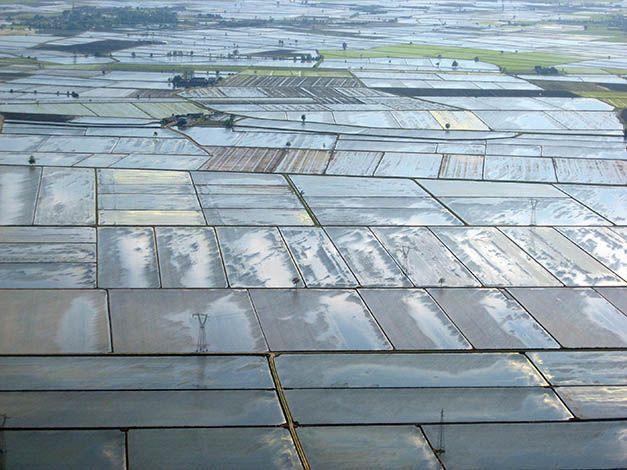 Terre d'Acqua, bassa Vercellese. #Italian #rice