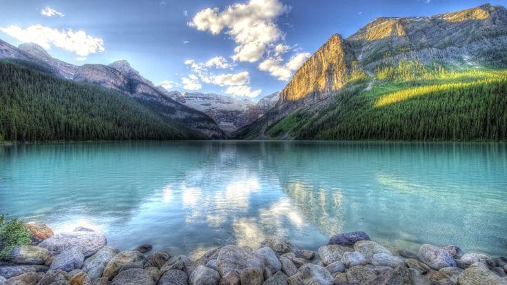 Parlayan Açık Mavi Göl ve Sık Ağaçlı Orman Duvar Kağıdı