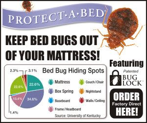 17 Best Images About Pests On Pinterest Essential Oil