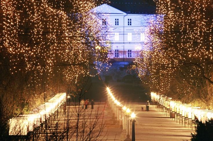 Adorned december view at tivoli Park in Ljubljana