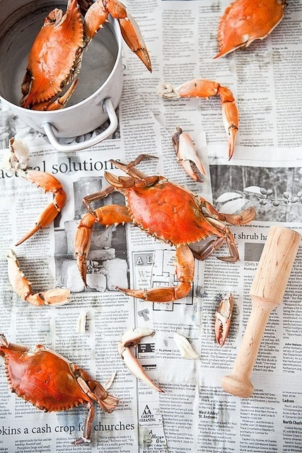 I love Chesapeak blue crabs steamed in beer and spiced with Old Bay Seafood  Seasoning