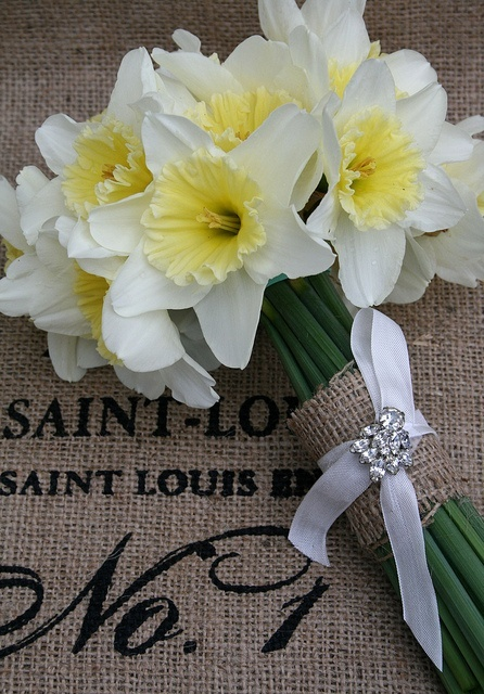 Daffodils wedding Flowers. If you're still planning my wedding for me, here's an idea :)