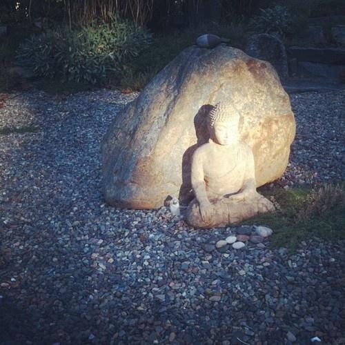 Tumblr  Buddha Garden