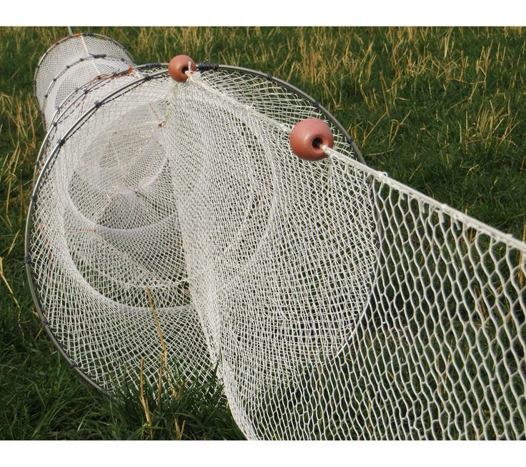 78 images about fyke nets on pinterest old pictures for Hoop net fishing