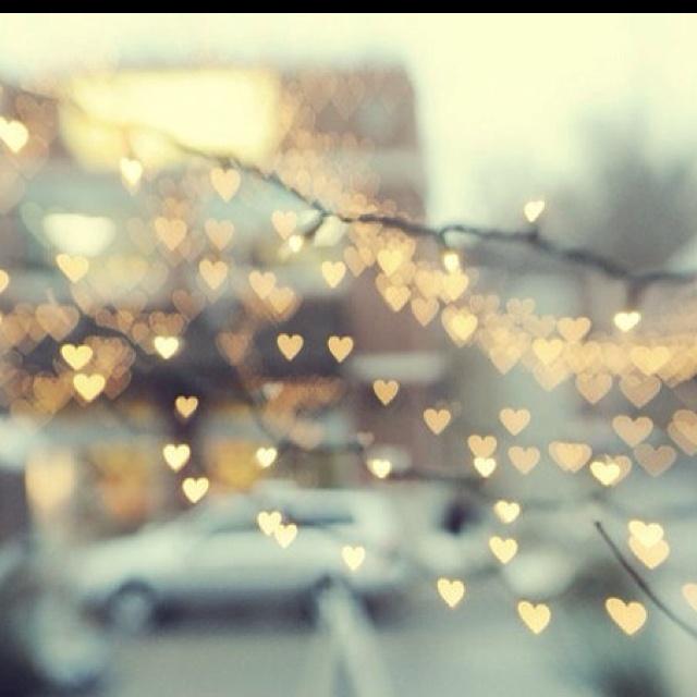 heart felt photography httpwwwpartylightscommini lights valentines day lights pinterest