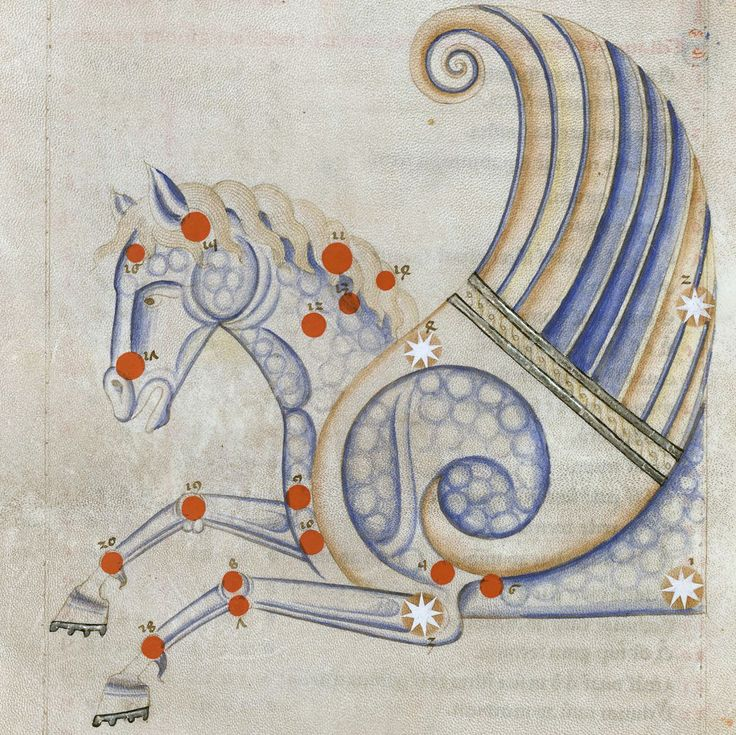 Pegasus constellation  Sufi Latinus (Latin translation of 'Kitāb al-kawākib al-thābita' of 'Abd al-Rahmān al-Ṣūfī), Bologna 1250-1275  BnF, Arsenal 1036, fol. 16r