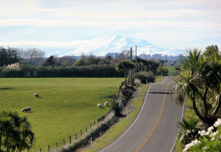 Makirikiri Road, Marton, Rangitikei. Mount Ruapehu in the background.