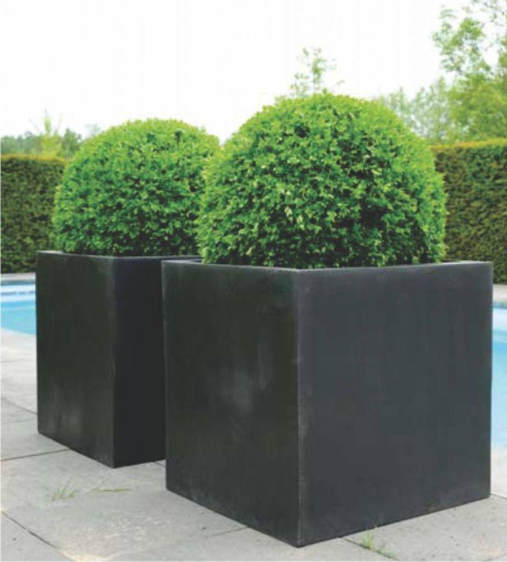 25 beste idee n over bloempotten voor buiten op pinterest buiten potplanten potplanten en for Buiten patio model