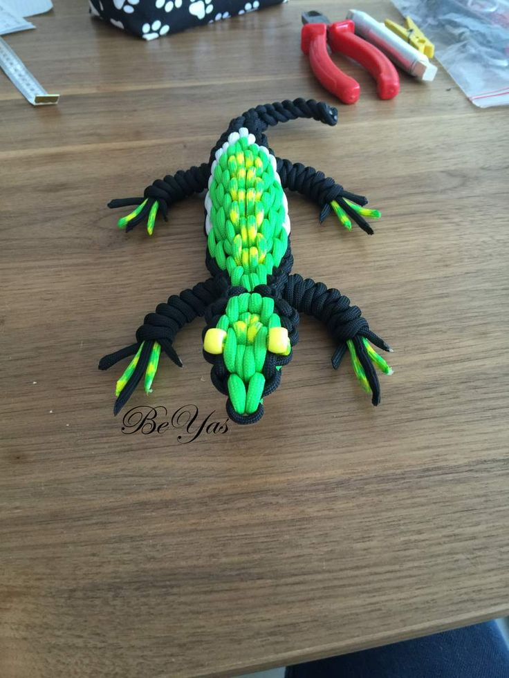 17 best ideas about the lizard on pinterest reptiles what is a predator and what is bo. Black Bedroom Furniture Sets. Home Design Ideas