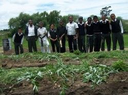 Many schools in the Midlands Meander have chosen to focus on creating food gardens as part of their commitment to the Eco-Schools process; others have planted wildlife-friendly indigenous gardens, hedges, traditional medicinal plants and colourful borders in the school grounds. http://www.midlandsmeander.co.za/social-responsibility