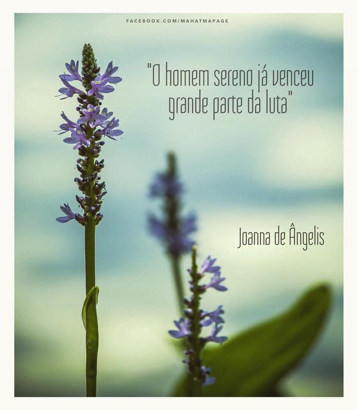 """""""O homem sereno já venceu grande parte da luta"""" (Joanna de Ângelis)"""