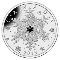 Royal Canadian Mint $20 2013 Fine Silver Coin - Winter Snowflake $114.95