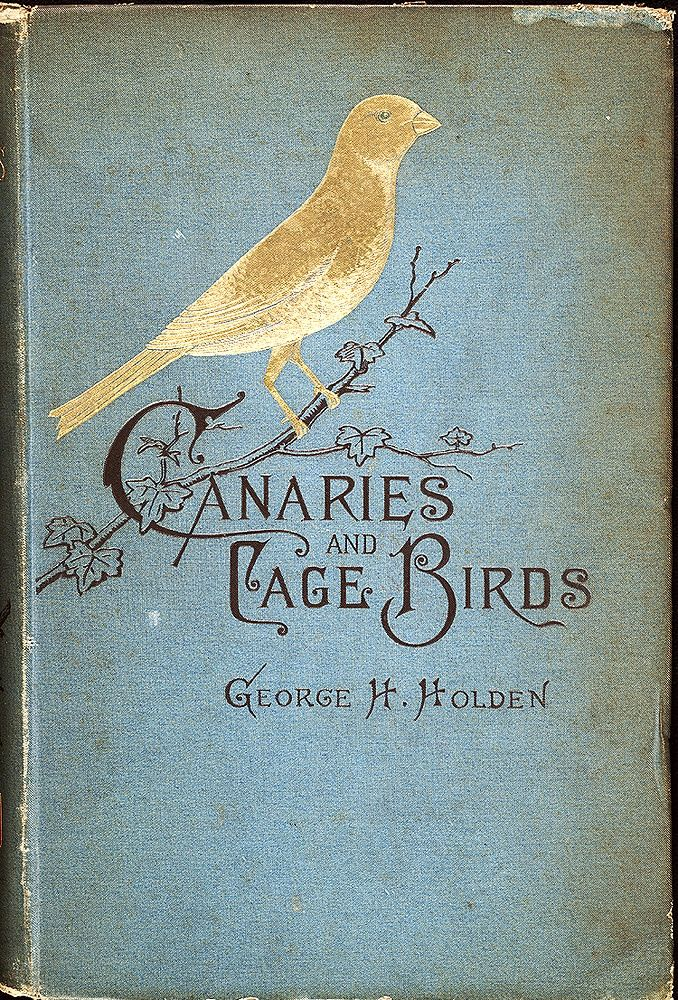 Les carnets de miss clara | demoisellemarie: for bookworms, #blue books# old...