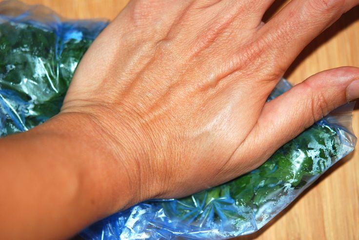 congelare le erbe aromatiche