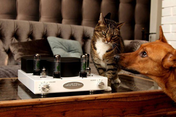fezz audio vacum tube amplifier