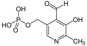 La vitamine B6, un bon régulateur hormonal - http://www.stimul-up.com/vitamine-b6-bon-regulateur-hormonal/     Vitamine B6 prolactine La vitamine B6 a pour nom scientifique pyridoxal, pyridoxamine ou bien encore pyridoxine est une vitamine dite hydrosoluble qui se mélange dans l'eau, elle fait partie des vitamines essentielle au bon fonctionnement de l'être humain.  Sa principale fonction est sur la transmission des neurones et sur le système nerveux. Cette vitami