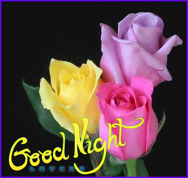 Good Night With Flowers Good night pictures with
