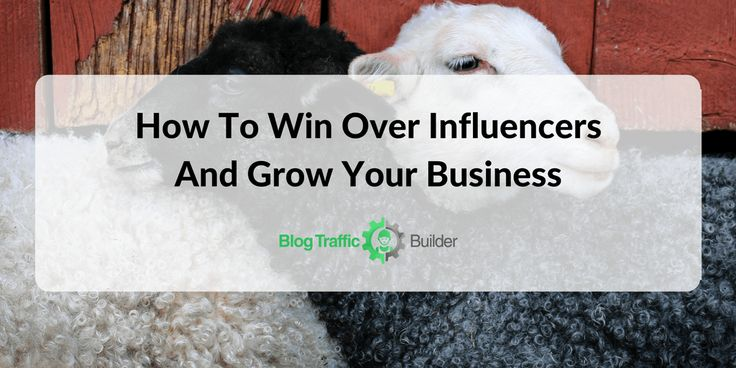 how-to-win-over-influencers-and-grow-your-business