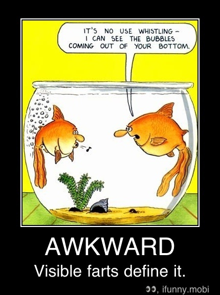 40 best funny fishing photos fifth amendment deep sea for Funny fish pictures