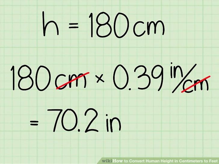 How To Convert Human Height In Centimeters To Feet Human Height Centimeters Height