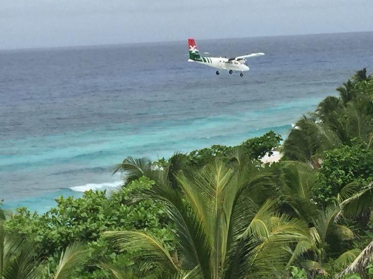 Landing in paradise