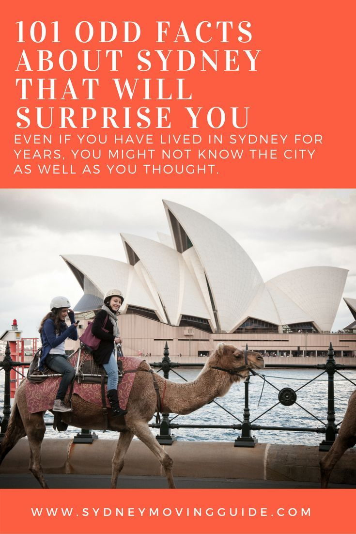 101 odd facts about sydney that will surprise you